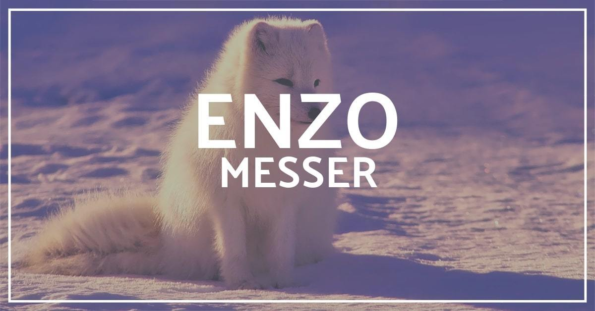 Enzo Trapper Messer Test